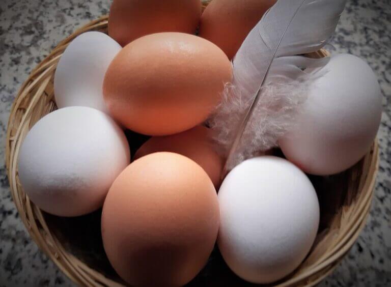 ¿Los huevos blancos son más ecológicos que los morenos?
